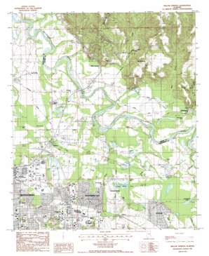 Willow Springs topo map