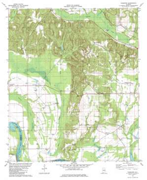 Forester topo map