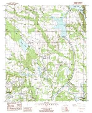 Elmore topo map