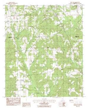 White City topo map