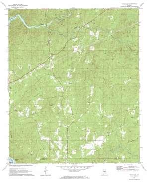 Richville topo map