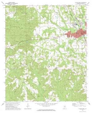 Clanton West topo map