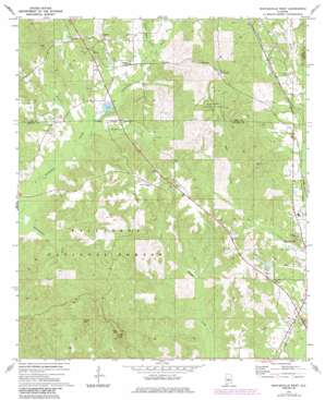 Maplesville West topo map