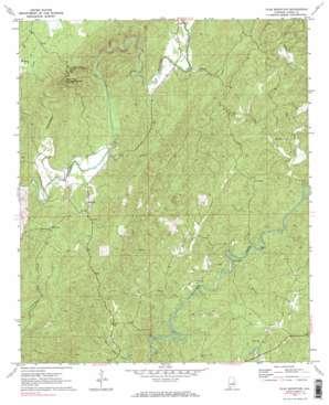 Flag Mountain topo map