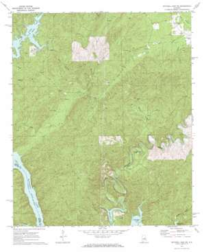 Mitchell Dam Nw topo map