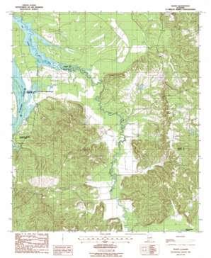 Tilden topo map