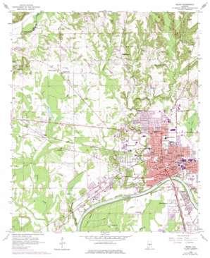 Selma topo map
