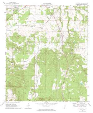 Old Spring Hill topo map