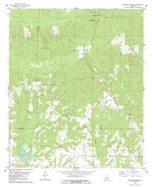 Morgan Springs topo map