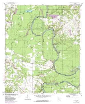 Mason Bend topo map
