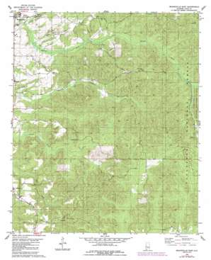 Moundville East topo map