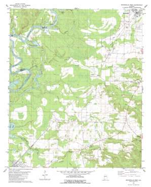 Moundville West topo map