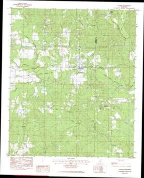 Chunky topo map