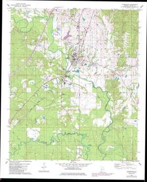 Livingston topo map