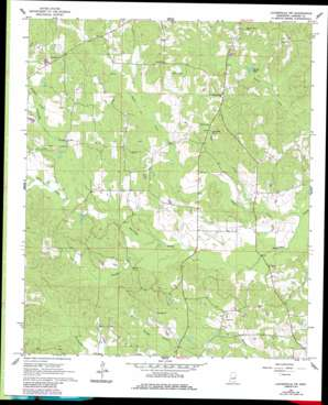 Lauderdale Nw USGS topographic map 32088f6