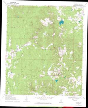 Paulding topo map