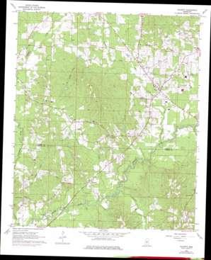 Puckett topo map