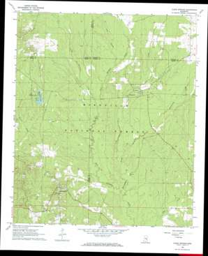 Clear Springs topo map