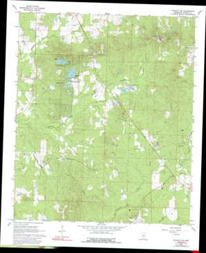 Puckett Nw topo map