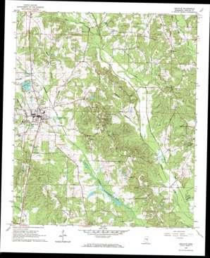Decatur topo map