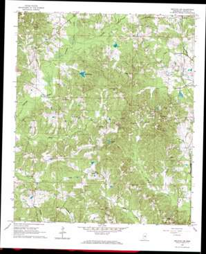 Decatur Nw topo map