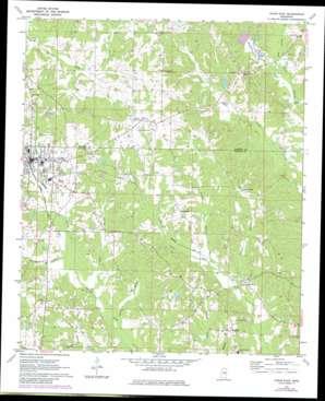 Union East topo map