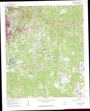 Vicksburg East topo map