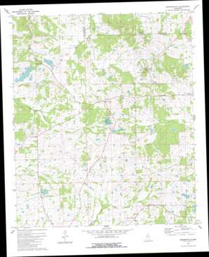 Brownsville topo map