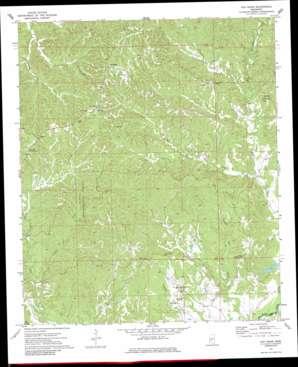 Oak Ridge topo map