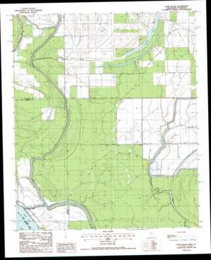 Cane Bayou topo map