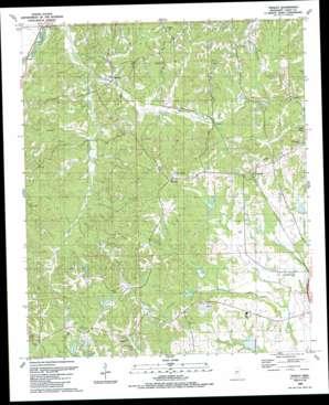 Tinsley topo map
