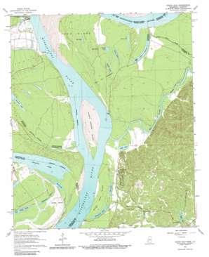 Grand Gulf topo map