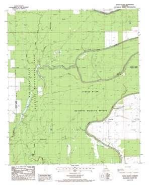 Tensas Bluff USGS topographic map 32091b4