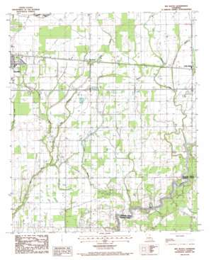 Bee Bayou USGS topographic map 32091d6