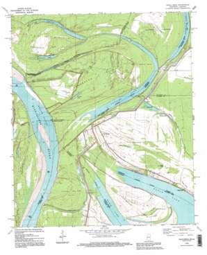 Eagle Bend topo map