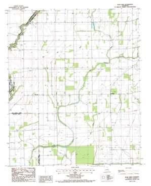 Bear Skin topo map