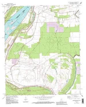 Whiting Bayou topo map