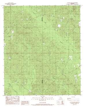 Cotton Plant topo map