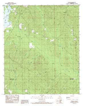 Womack USGS topographic map 32092b4