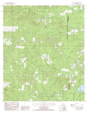 Mount Olive topo map