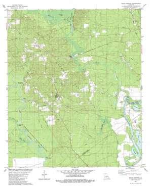 Rocky Branch topo map