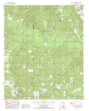 Lake Foursome topo map