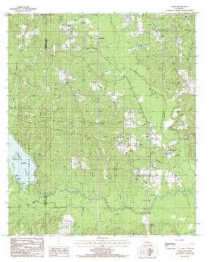 Lillie topo map