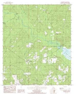 Summerfield topo map
