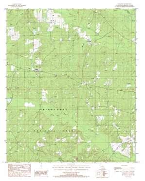Colquitt topo map
