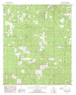 Chestnut topo map