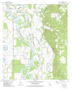 East Point topo map