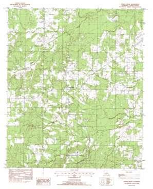 Spring Ridge topo map