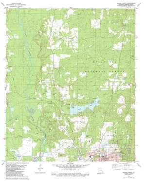 Minden North topo map