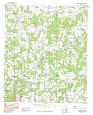 Long Branch topo map